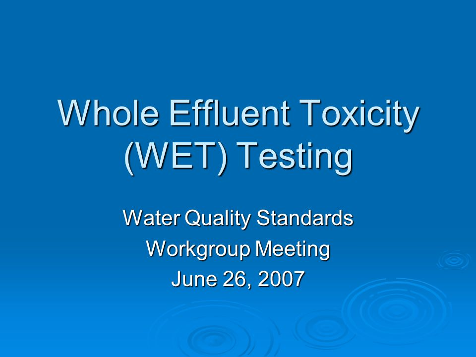 Whole Effluent Toxicity (WET) Testing Water Quality Standards Workgroup Meeting June 26, 2007