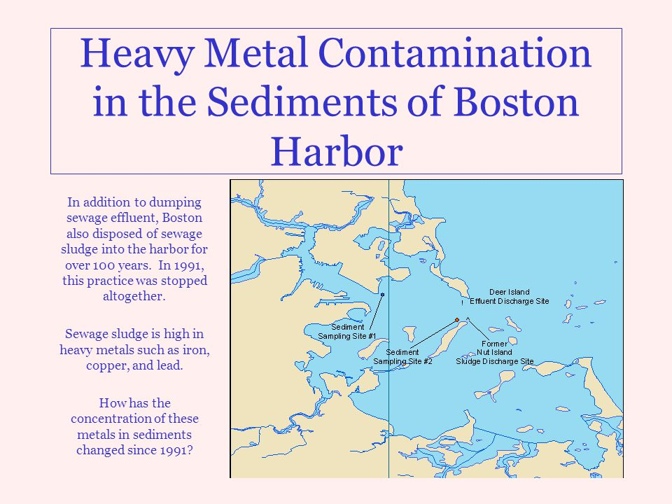 Heavy Metal Contamination in the Sediments of Boston Harbor In addition to dumping sewage effluent, Boston also disposed of sewage sludge into the har