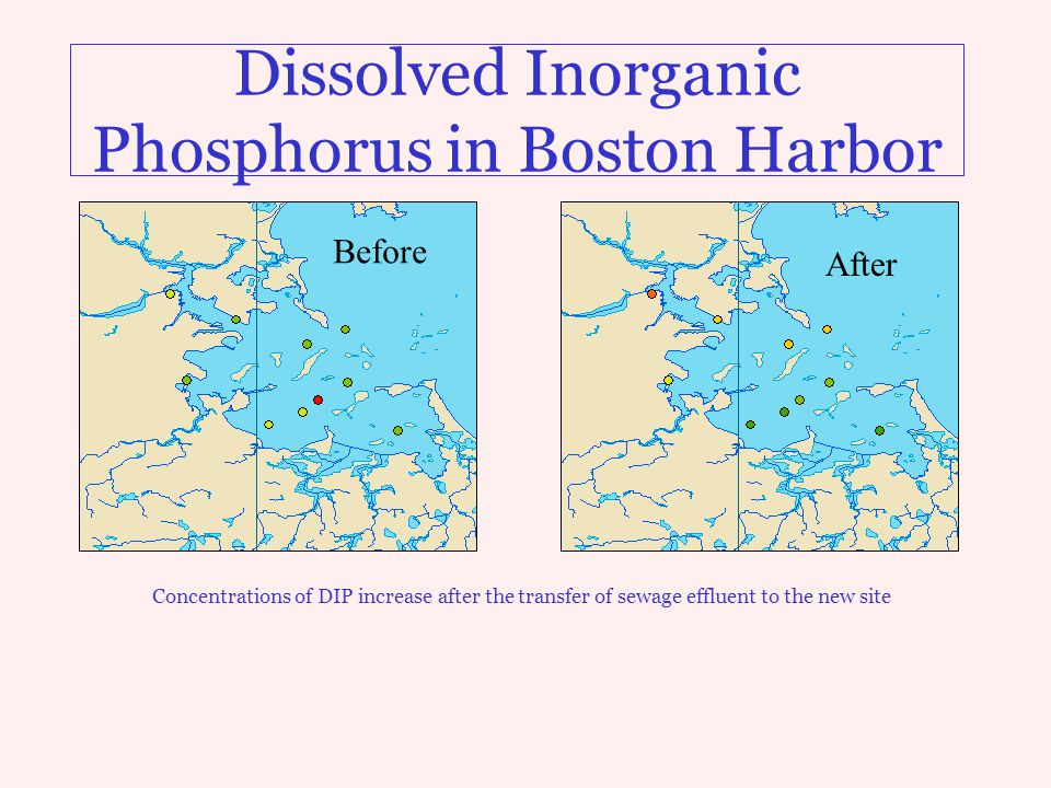 Dissolved Inorganic Phosphorus in Boston Harbor Concentrations of DIP increase after the transfer of sewage effluent to the new site Before After