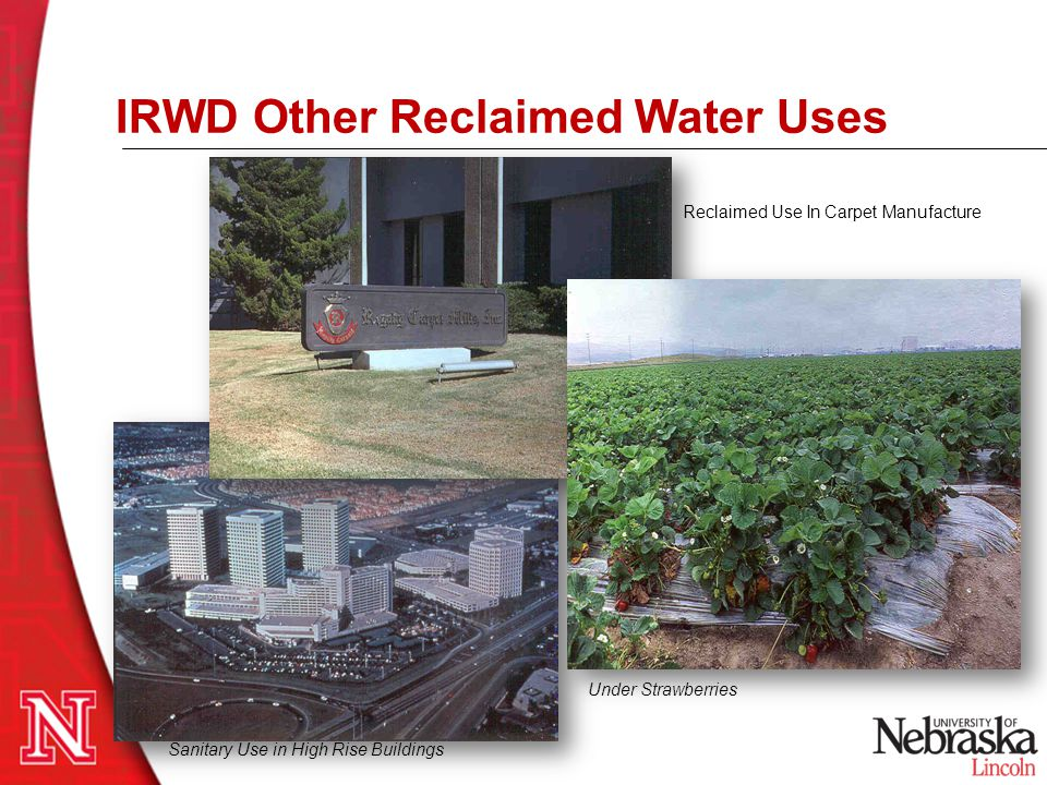 Sanitary Use in High Rise Buildings Under Strawberries Reclaimed Use In Carpet Manufacture IRWD Other Reclaimed Water Uses