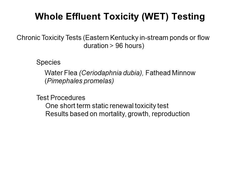 Whole Effluent Toxicity (WET) Testing Chronic Toxicity Tests (Eastern Kentucky in-stream ponds or flow duration > 96 hours) Species Water Flea (Ceriod