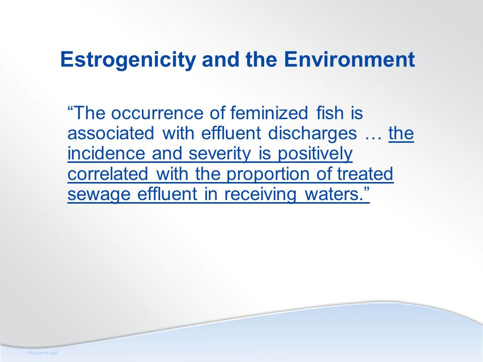 Filename.ppt Estrogenicity and the Environment The occurrence of feminized fish is associated with effluent discharges … the incidence and severity is positively correlated with the proportion of treated sewage effluent in receiving waters.