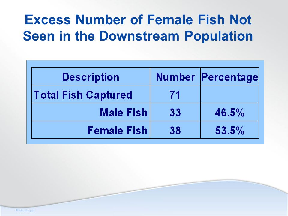 Filename.ppt Excess Number of Female Fish Not Seen in the Downstream Population