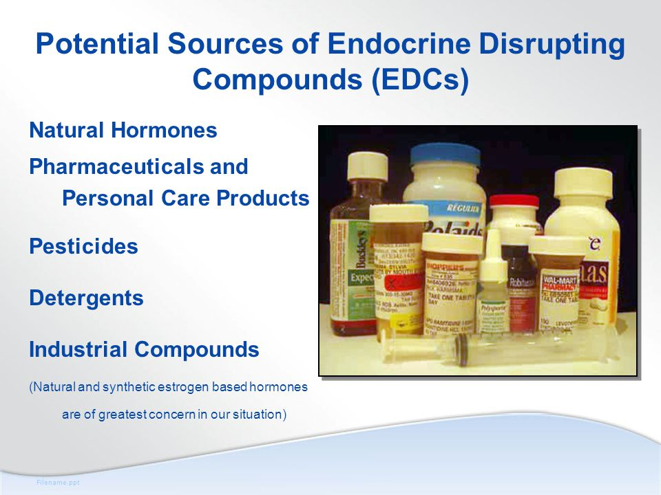 Filename.ppt Potential Sources of Endocrine Disrupting Compounds (EDCs) Natural Hormones Pharmaceuticals and Personal Care Products Pesticides Detergents Industrial Compounds (Natural and synthetic estrogen based hormones are of greatest concern in our situation)