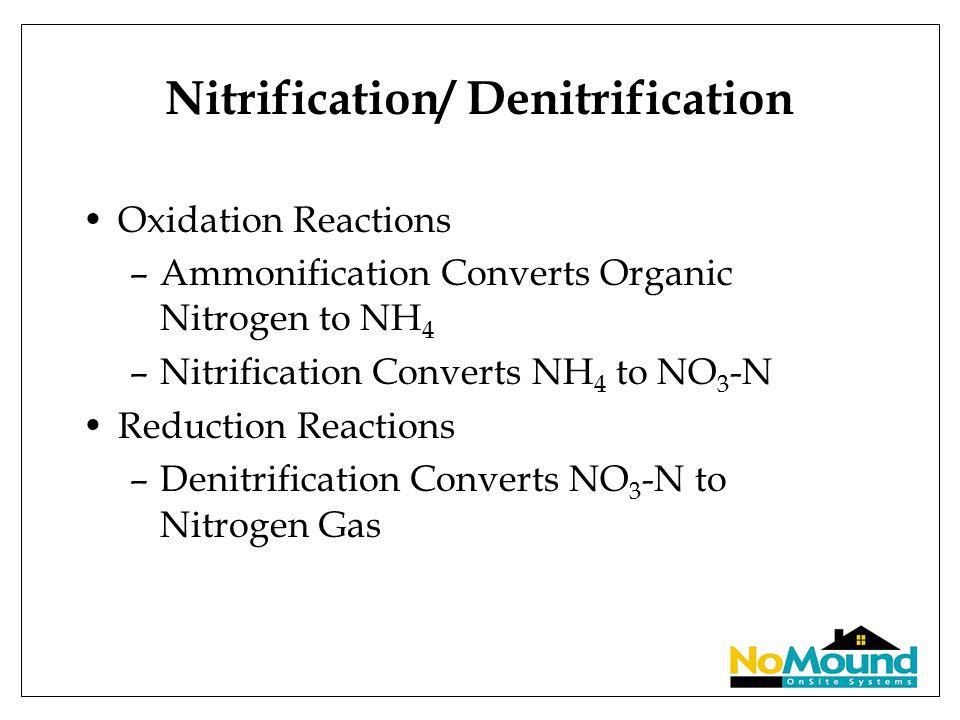 Nitrification/ Denitrification Oxidation Reactions –Ammonification Converts Organic Nitrogen to NH 4 –Nitrification Converts NH 4 to NO 3 -N Reduction Reactions –Denitrification Converts NO 3 -N to Nitrogen Gas