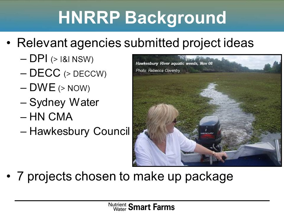 HNRRP Background Relevant agencies submitted project ideas –DPI (> I&I NSW) –DECC (> DECCW) –DWE (> NOW) –Sydney Water –HN CMA –Hawkesbury Council 7 projects chosen to make up package Hawkesbury River aquatic weeds, Nov 08 Photo: Rebecca Coventry