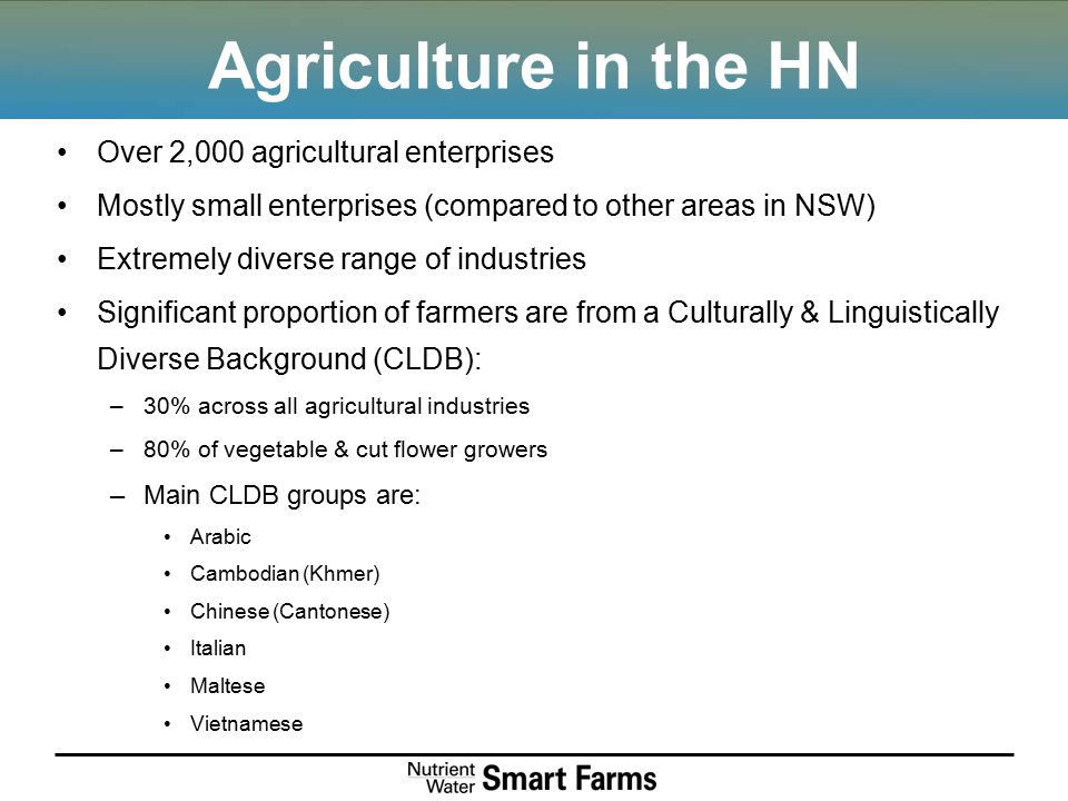 Agriculture in the HN Over 2,000 agricultural enterprises Mostly small enterprises (compared to other areas in NSW) Extremely diverse range of industries Significant proportion of farmers are from a Culturally & Linguistically Diverse Background (CLDB): –30% across all agricultural industries –80% of vegetable & cut flower growers –Main CLDB groups are: Arabic Cambodian (Khmer) Chinese (Cantonese) Italian Maltese Vietnamese