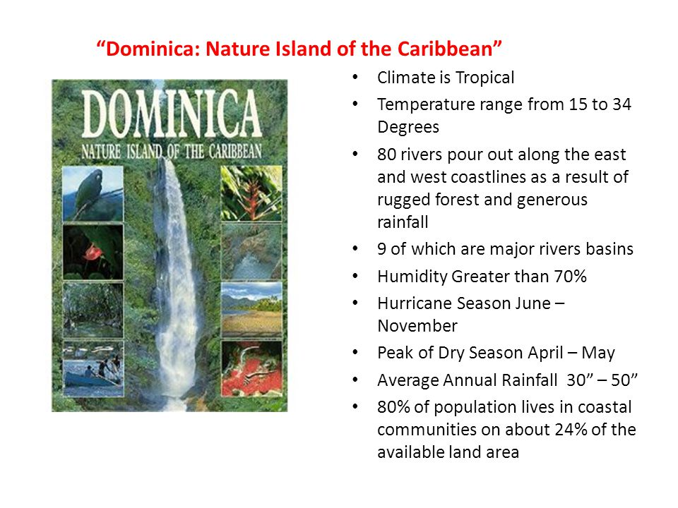 Dominica: Nature Island of the Caribbean Climate is Tropical Temperature range from 15 to 34 Degrees 80 rivers pour out along the east and west coastlines as a result of rugged forest and generous rainfall 9 of which are major rivers basins Humidity Greater than 70% Hurricane Season June – November Peak of Dry Season April – May Average Annual Rainfall 30 – 50 80% of population lives in coastal communities on about 24% of the available land area