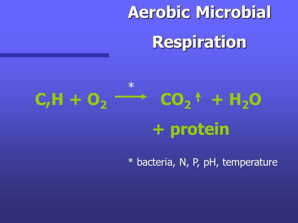 Aerobic Microbial Respiration Respiration C,H + O 2 CO 2 + H 2 O + protein * * bacteria, N, P, pH, temperature