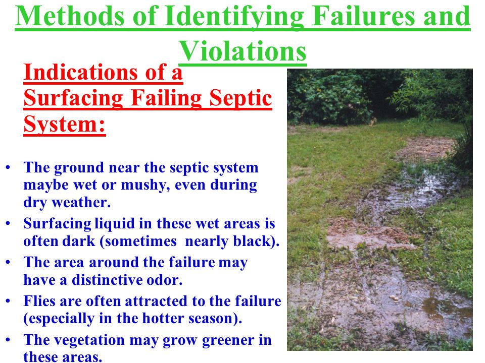 Methods of Identifying Failures and Violations Indications of a Surfacing Failing Septic System: The ground near the septic system maybe wet or mushy, even during dry weather.