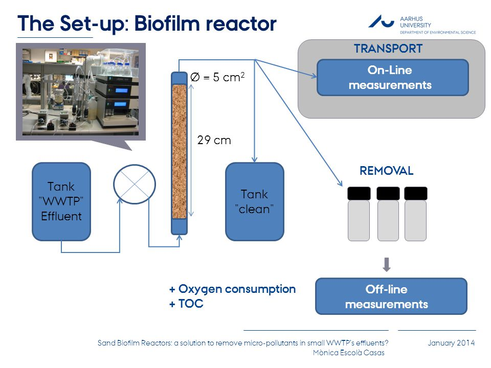 Sand Biofilm Reactors: a solution to remove micro-pollutants in small WWTP's effluents.