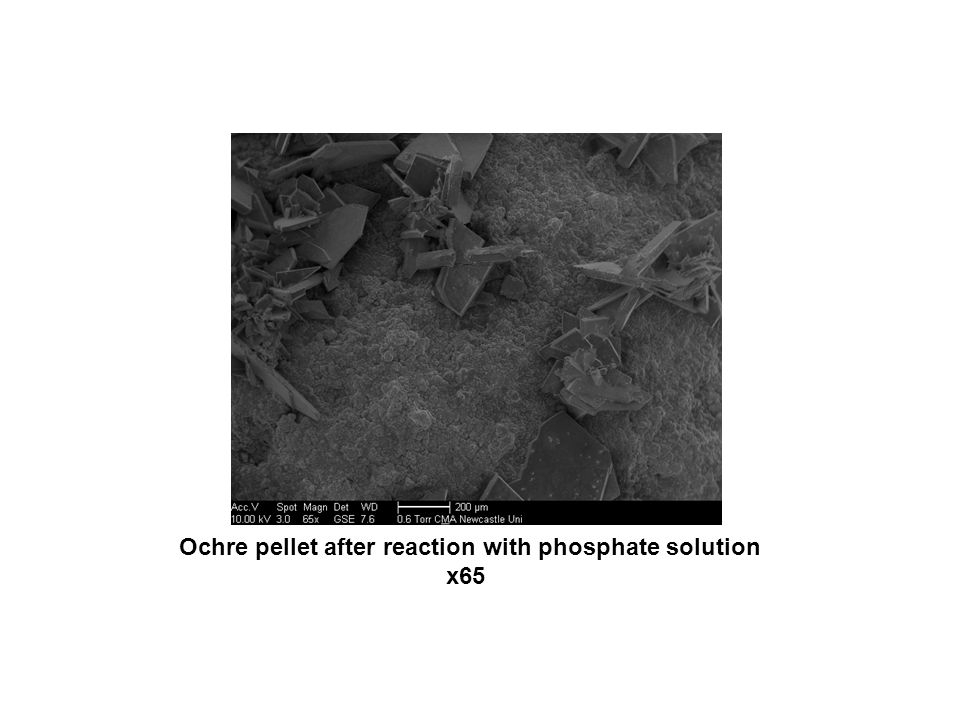 Ochre pellet after reaction with phosphate solution x65