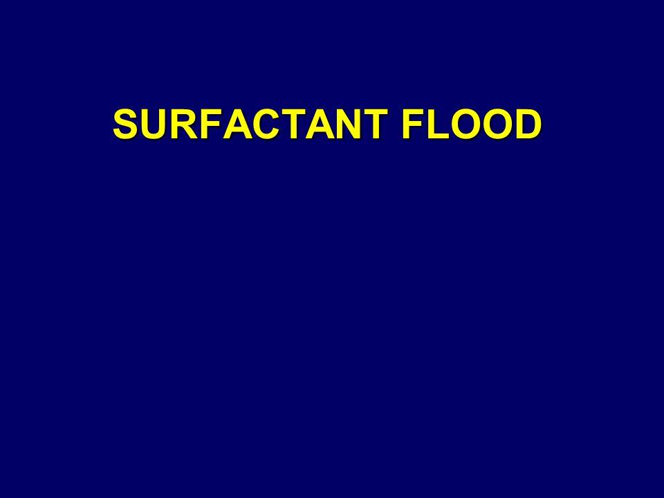 SURFACTANT FLOOD