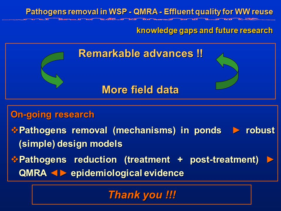 Pathogens removal in WSP - QMRA - Effluent quality for WW reuse knowledge gaps and future research Remarkable advances !.