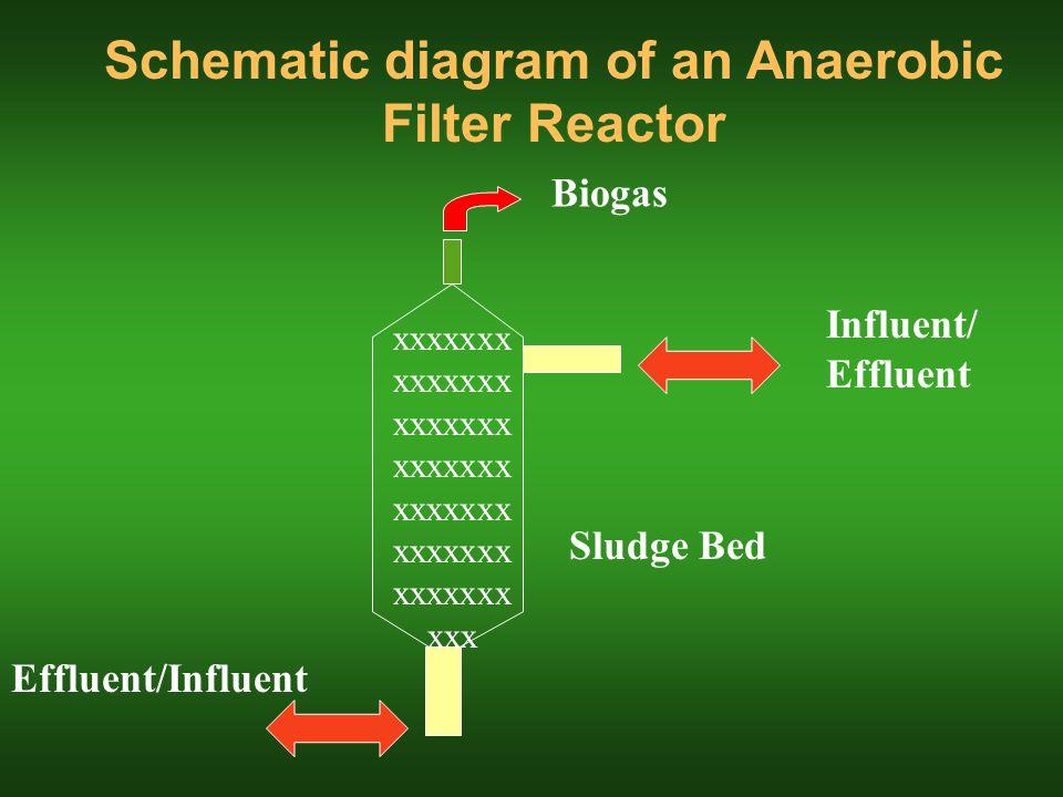Schematic diagram of an Anaerobic Filter Reactor Effluent/Influent Influent/ Effluent Biogas Sludge Bed xxxxxxx xxxxxxx xxxxxxx xxxxxxx xxxxxxx xxxxxxx xxxxxxx xxx