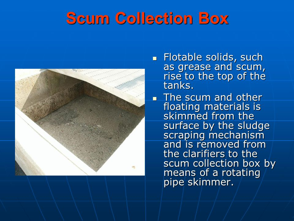 Scum Collection Box Flotable solids, such as grease and scum, rise to the top of the tanks.