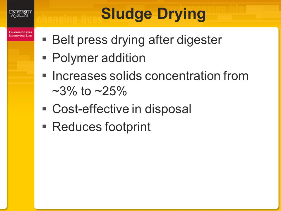  Belt press drying after digester  Polymer addition  Increases solids concentration from ~3% to ~25%  Cost-effective in disposal  Reduces footprint Sludge Drying