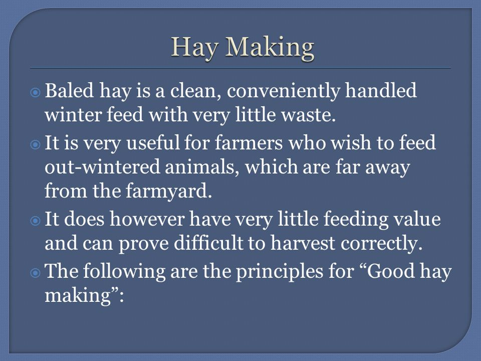  Baled hay is a clean, conveniently handled winter feed with very little waste.  It is very useful for farmers who wish to feed out-wintered animals
