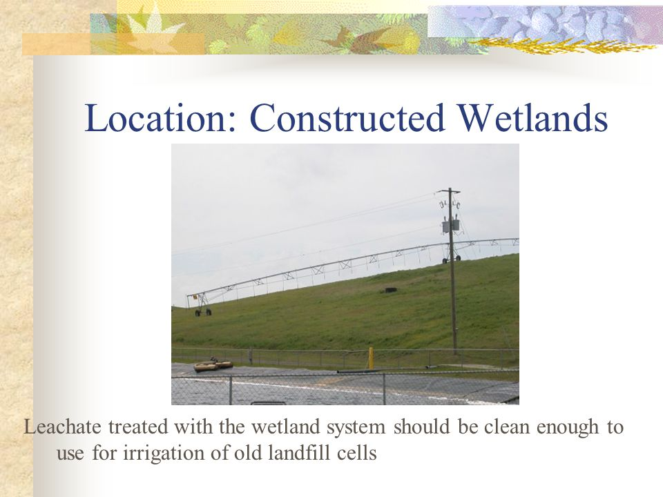 Location: Constructed Wetlands Leachate treated with the wetland system should be clean enough to use for irrigation of old landfill cells