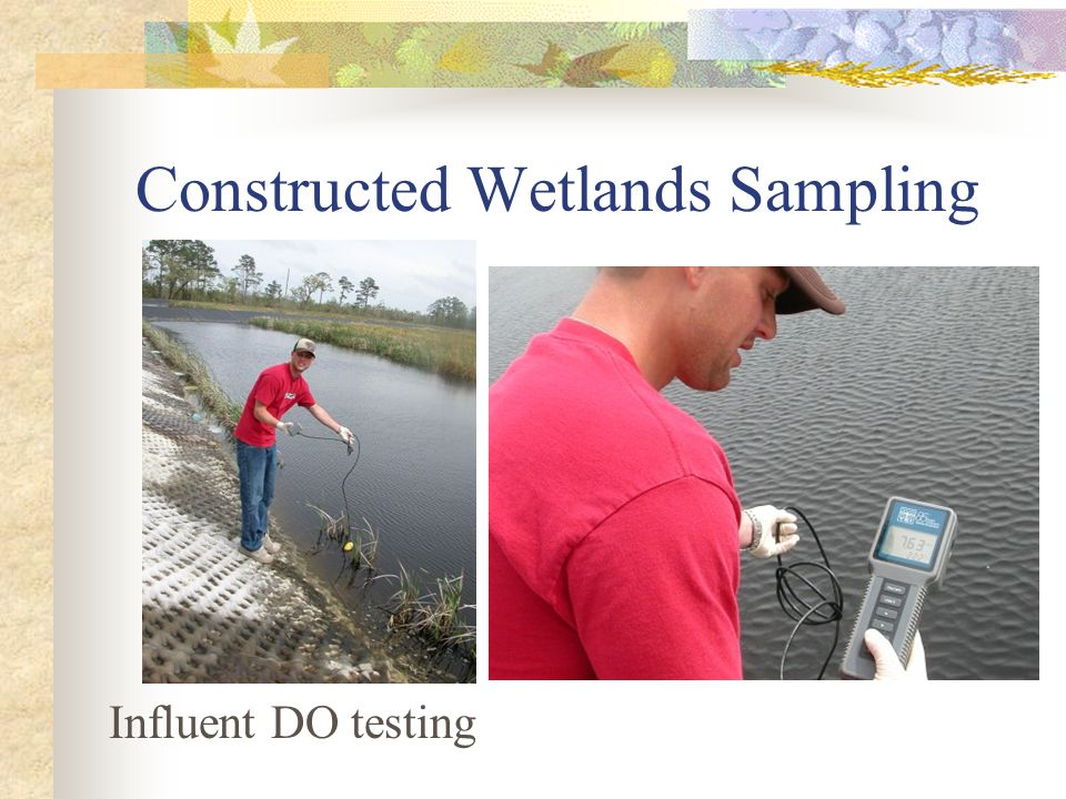 Constructed Wetlands Sampling Influent DO testing
