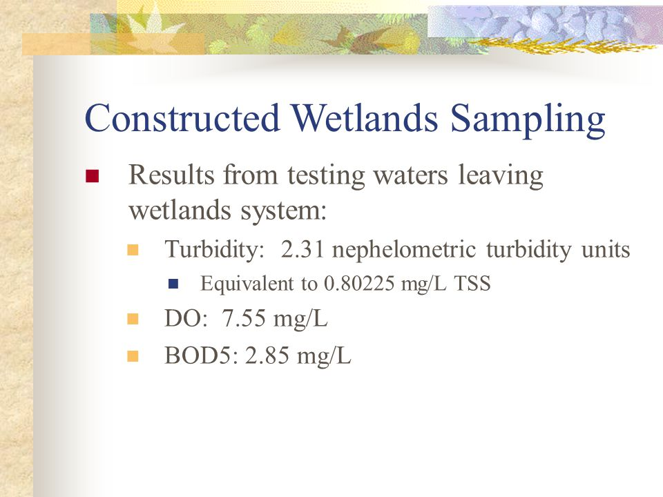 Constructed Wetlands Sampling Results from testing waters leaving wetlands system: Turbidity: 2.31 nephelometric turbidity units Equivalent to 0.80225 mg/L TSS DO: 7.55 mg/L BOD5: 2.85 mg/L