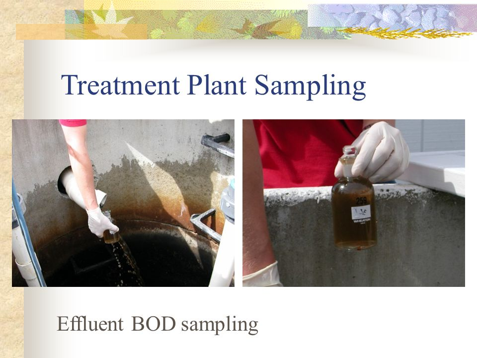 Treatment Plant Sampling Effluent BOD sampling