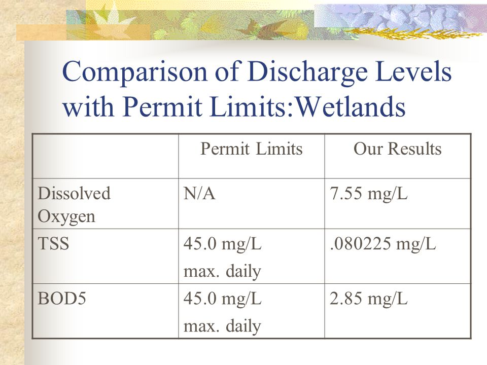 Comparison of Discharge Levels with Permit Limits:Wetlands Permit LimitsOur Results Dissolved Oxygen N/A7.55 mg/L TSS45.0 mg/L max.