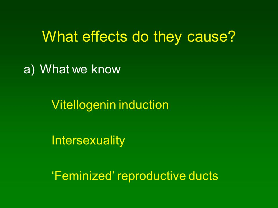 What effects do they cause? a)What we know Vitellogenin induction Intersexuality 'Feminized' reproductive ducts