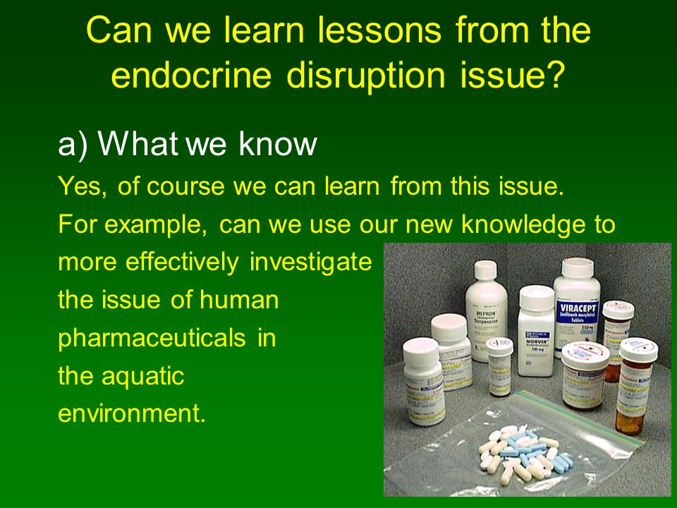 Can we learn lessons from the endocrine disruption issue.