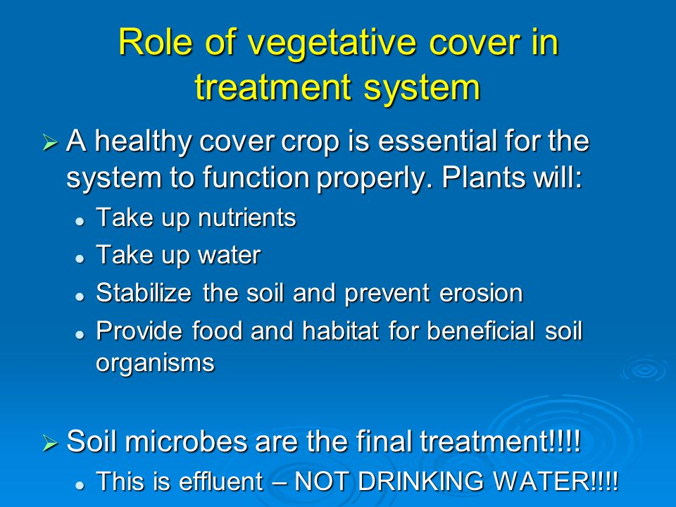 Role of vegetative cover in treatment system  A healthy cover crop is essential for the system to function properly. Plants will: Take up nutrients T