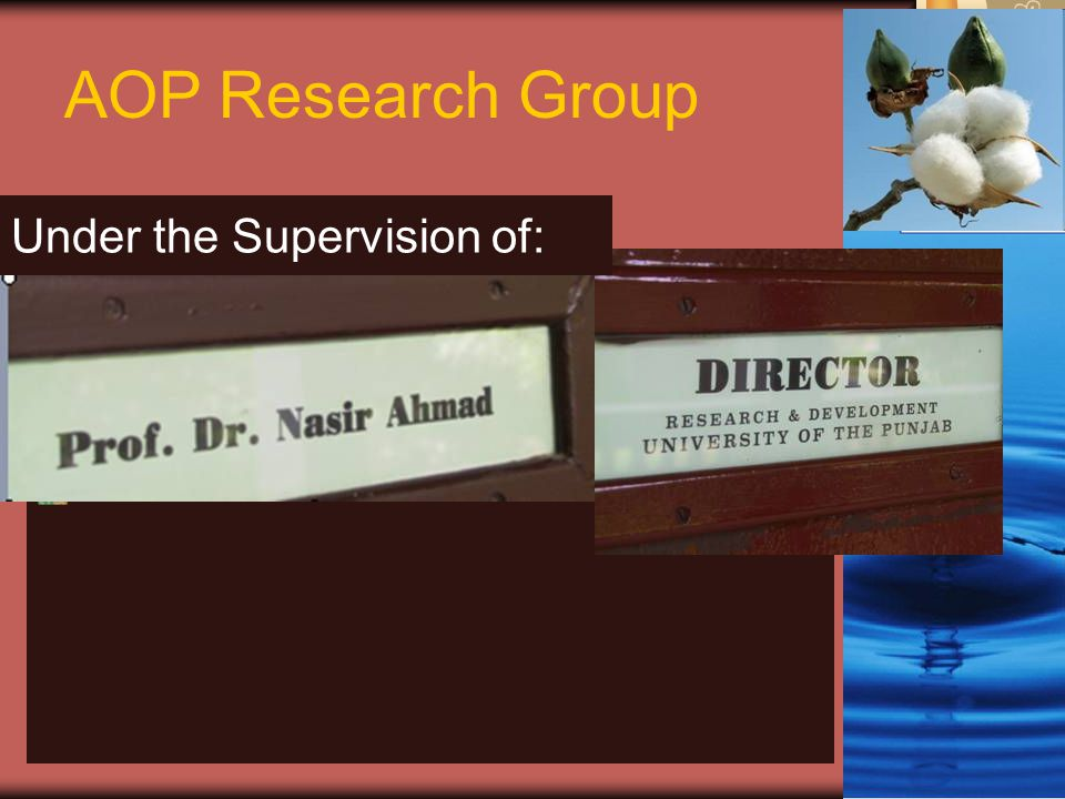 AOP Research Group Under the Supervision of: