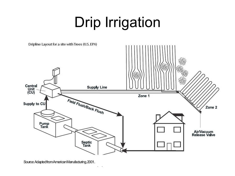 (C) Daniel Friedman32 Drip Irrigation