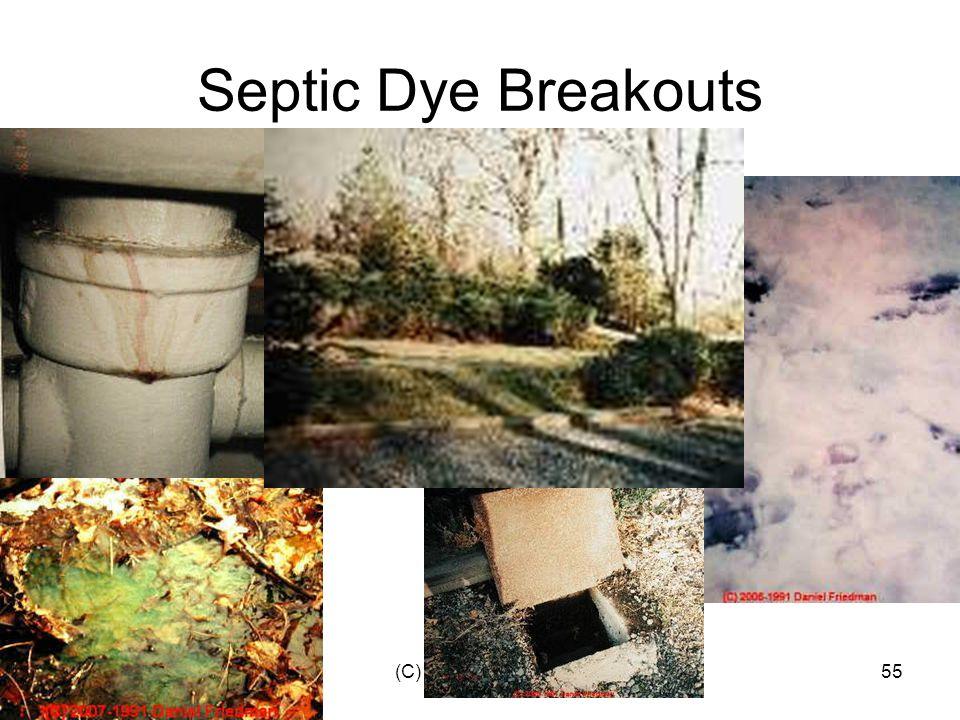 (C) Daniel Friedman55 Septic Dye Breakouts