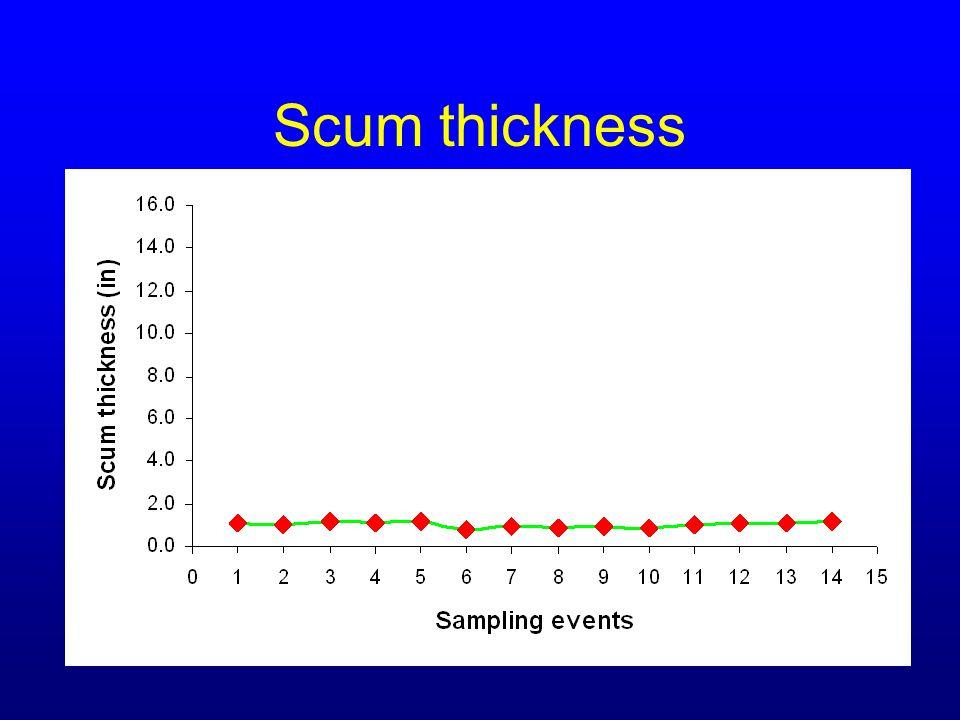 Scum thickness