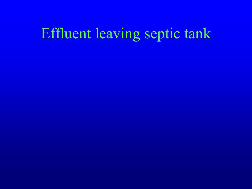 Effluent leaving septic tank