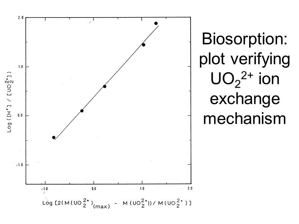 Homestake gold operation Homestake biodegradation plant Pseudomonas and Nitrosomonas on contactors 'M(CN)' + 2H 2 O + 0.5O 2 + H-biofilm M-biofilm + HCO 3 - + NH 4 + SCN - + + 3H 2 O + 2O 2 SO 4 2- + H 2 CO 3 + NH 4 + Nitrosomonas Pseudomonas NH 4 + + 1.5O 2 NO 2 - + 2H + + H 2 O NO 2 - + 0.5O 2 NO 3 -