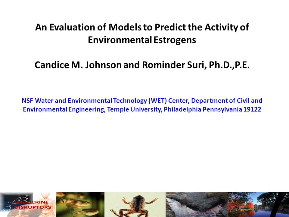 An Evaluation of Models to Predict the Activity of Environmental Estrogens Candice M.
