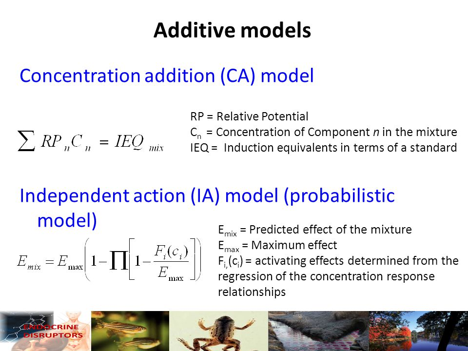Concentration addition (CA) model Independent action (IA) model (probabilistic model) Additive models RP = Relative Potential C n = Concentration of Component n in the mixture IEQ = Induction equivalents in terms of a standard E mix = Predicted effect of the mixture E max = Maximum effect F i, (c i ) = activating effects determined from the regression of the concentration response relationships 11