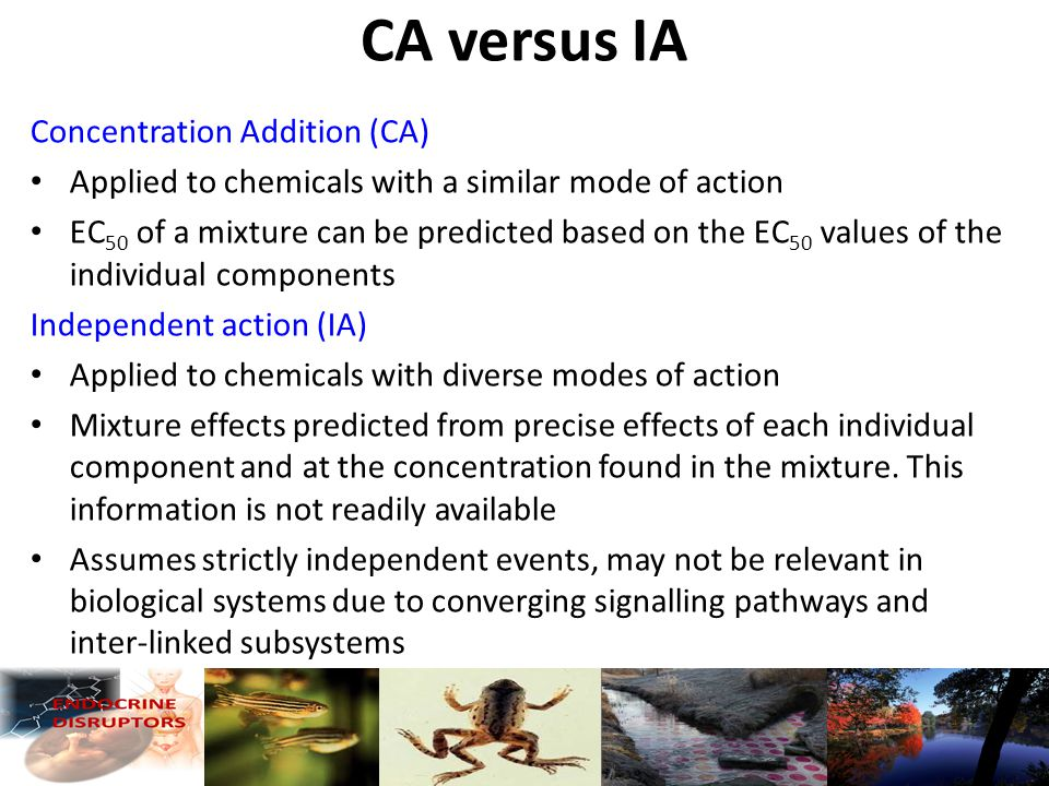 CA versus IA Concentration Addition (CA) Applied to chemicals with a similar mode of action EC 50 of a mixture can be predicted based on the EC 50 values of the individual components Independent action (IA) Applied to chemicals with diverse modes of action Mixture effects predicted from precise effects of each individual component and at the concentration found in the mixture.