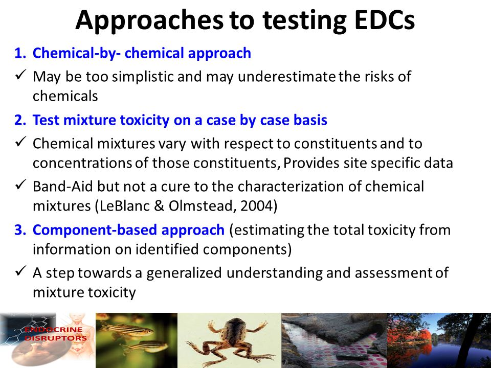 Approaches to testing EDCs 1.Chemical-by- chemical approach May be too simplistic and may underestimate the risks of chemicals 2.Test mixture toxicity on a case by case basis Chemical mixtures vary with respect to constituents and to concentrations of those constituents, Provides site specific data Band-Aid but not a cure to the characterization of chemical mixtures (LeBlanc & Olmstead, 2004) 3.Component-based approach (estimating the total toxicity from information on identified components) A step towards a generalized understanding and assessment of mixture toxicity