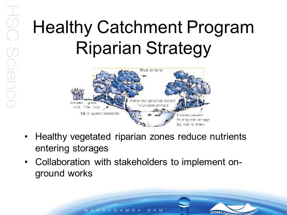 Healthy Catchment Program Riparian Strategy Healthy vegetated riparian zones reduce nutrients entering storages Collaboration with stakeholders to imp