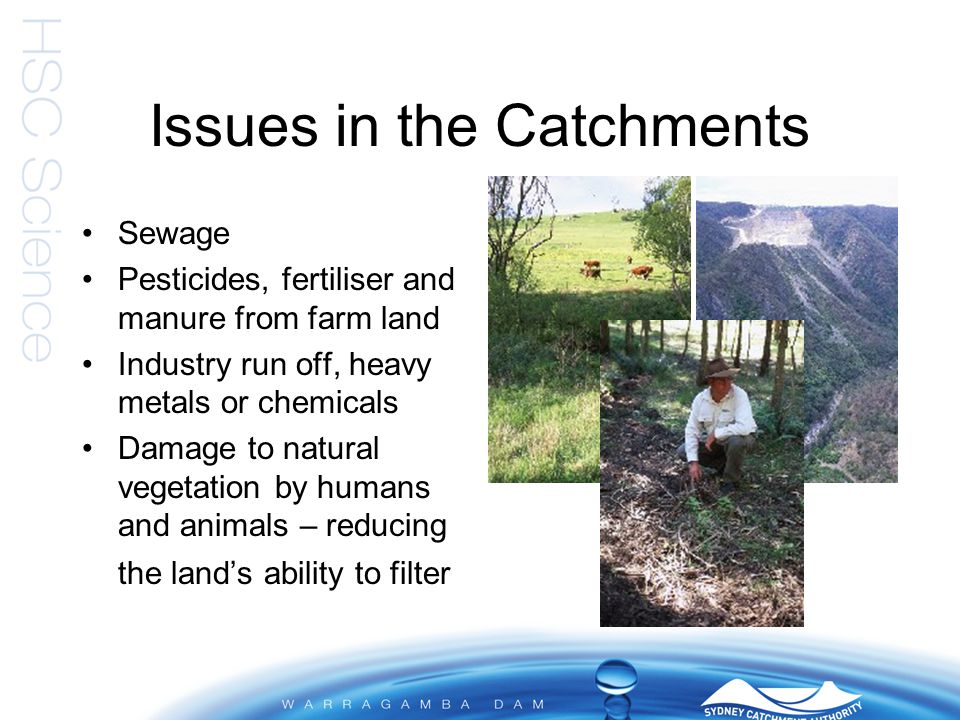 Issues in the Catchments Contamination of used and disused mining sites Accidental fuel and/or chemical spills Feral animals and introduced species Uncontrolled fires