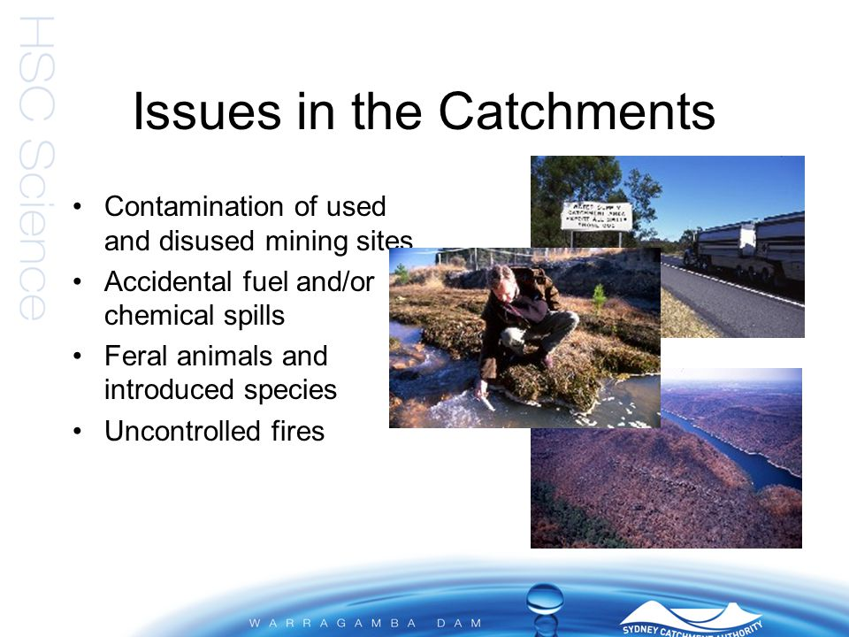Healthy Catchments Program Strategies for Sewage Riparian Stormwater Rural lands SCA Managed lands Compliance Catchment Information