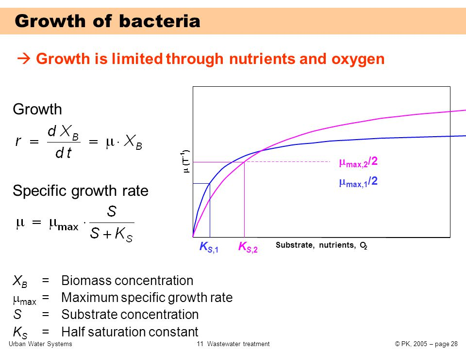 Urban Water Systems11 Wastewater treatment© PK, 2005 – page 28 Growth of bacteria  Growth is limited through nutrients and oxygen  max,2 /2  max,1