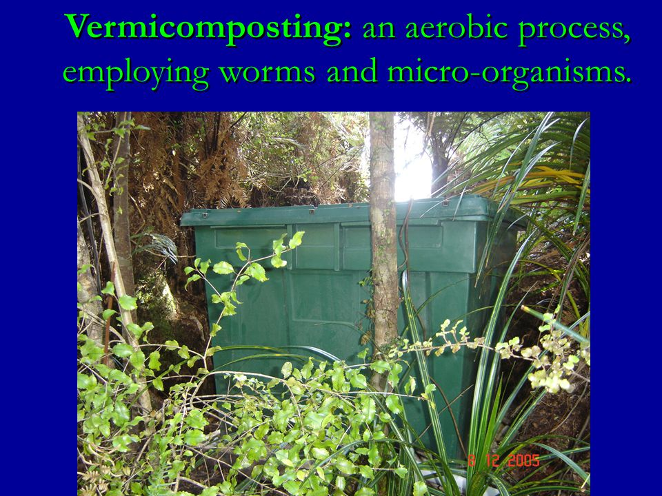 Vermicomposting: an aerobic process, employing worms and micro-organisms.