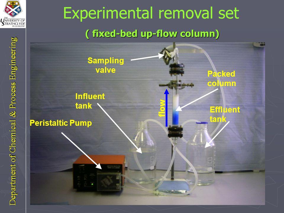 Cu(II) adsorption (continuous mode) Cu(II) adsorption (continuous mode) Department of Chemical & Process Engineering