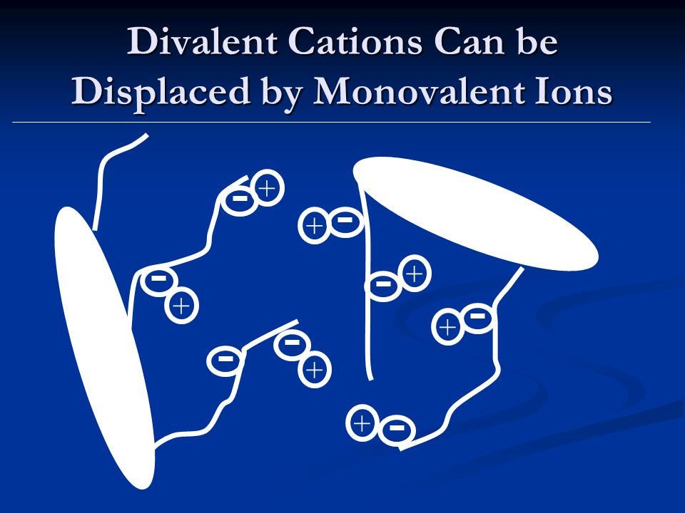Divalent Cations Can be Displaced by Monovalent Ions + + + + + + +