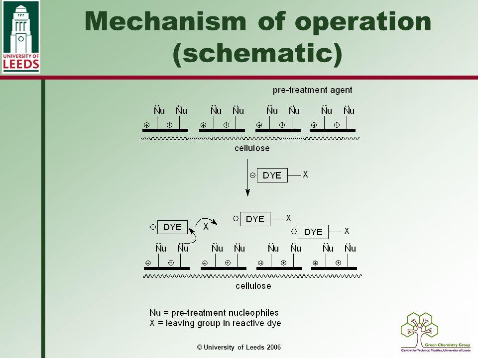 © University of Leeds 2006 Mechanism of operation (schematic)