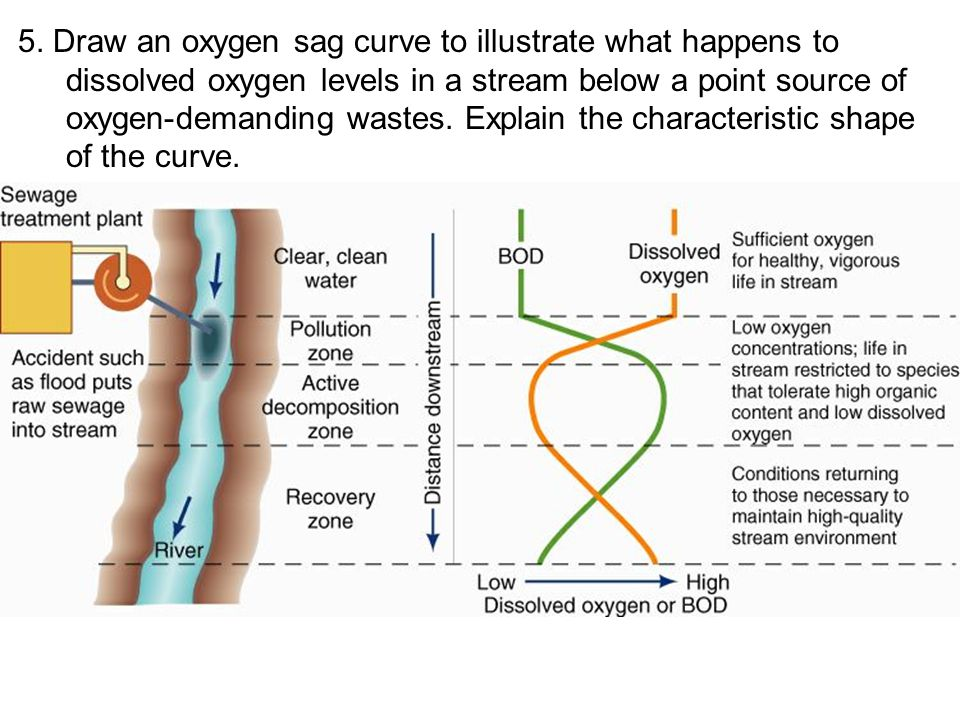 5. Draw an oxygen sag curve to illustrate what happens to dissolved oxygen levels in a stream below a point source of oxygen-demanding wastes. Explain