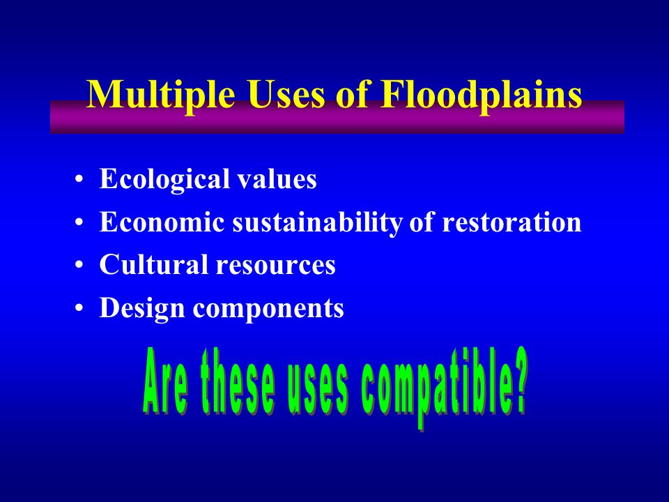 Ecological values Economic sustainability of restoration Cultural resources Design components Multiple Uses of Floodplains